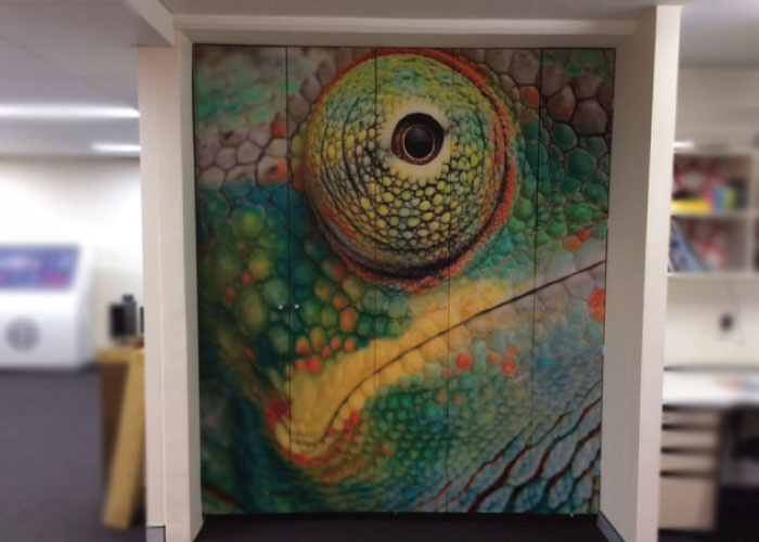 Jmac Graphics, Signage, Indoor, Office, Wall Graphics